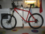 On-One Inbred 456 (red)