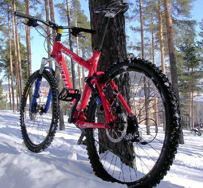 specialized_winter